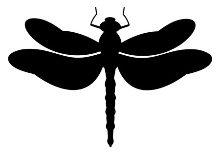 black dragonfly on white background Illustration