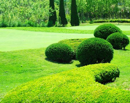 Garden . Field for a golf. Stock Photo