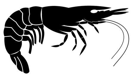 Shrimp Stock Vector - 5326733