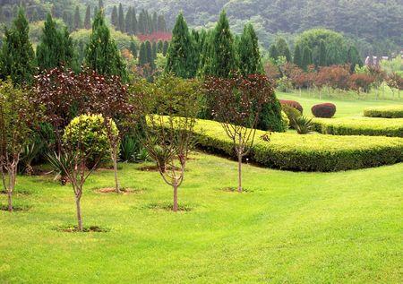 Garden Stock Photo - 5491633