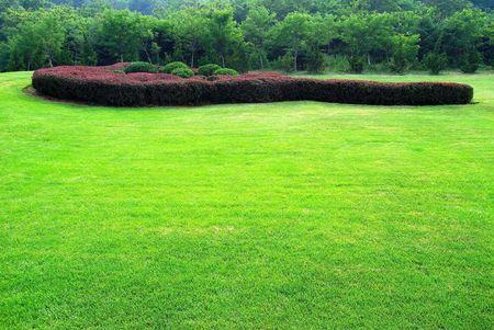Garden Stock Photo - 5669369