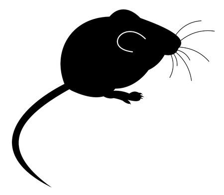 mus: Mouse. Illustration.