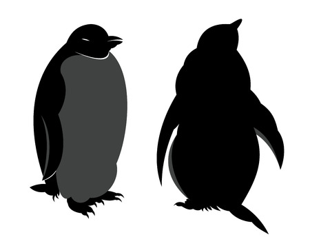 Two penguins. Face and rear views. Illustration.  Vector