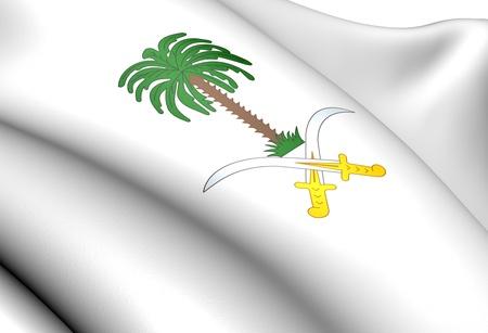 Saudi Arabia coat of arms. Close up.    Stock Photo