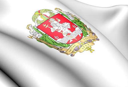 Vilnius coat of arms. Close up.    photo