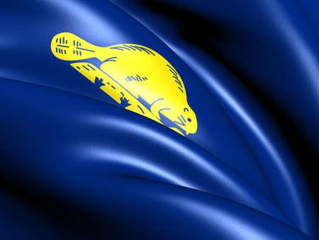 reverse: Flag of Oregon (Reverse), USA. Close Up.
