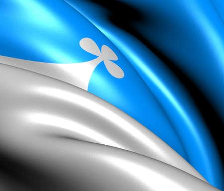 Flag of Leksvik, Norway. Close Up.  Stock Photo - 13303497