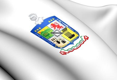 leon de dibujos animados: Bandera de Nuevo León, México. Acercamiento. Foto de archivo