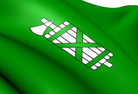 st gallen: Flag of St  Gallen  Close Up