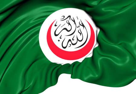 organisation: Organisation of Islamic Cooperation Flag. Close Up.