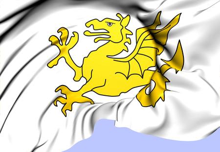 wyvern: Kingdom of Wessex Flag. Close Up.