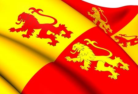 cymru: Sons of Glyndwr Flag. Close Up.
