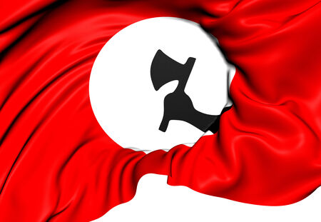 nationalists: Sindhi Nationalists Flag. Close Up.