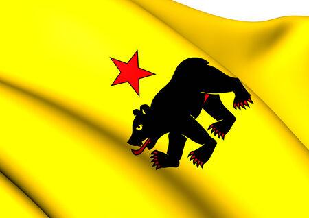 rheintal: Flag of Altstatten, Switzerland. Close Up.