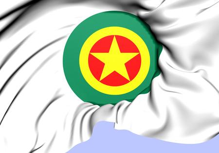 airforce: Roundel of Ethiopia. Close Up.