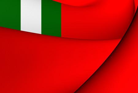 ensign: Civil Ensign of Nigeria. Close Up.