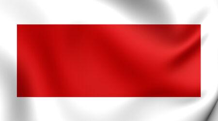 Flag of Sharjah, UAE. Close Up.