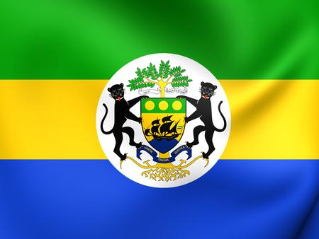 presidential: Presidential Standard of Gabon. Close Up. Stock Photo