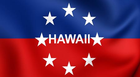 governor: Governor of Hawaii Flag. Close Up.