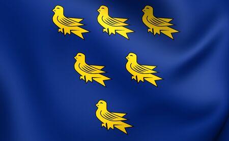 former: Flag of Sussex. Close Up.
