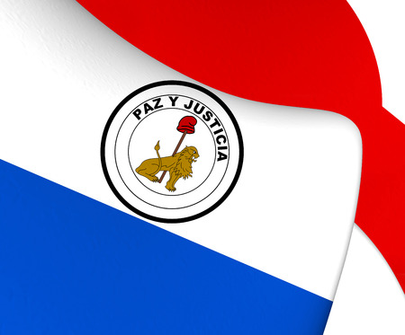 reverse: Flag of Paraguay (Reverse). Close Up.