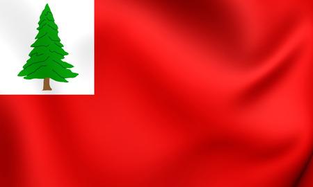new england: Flag of New England, USA. Close Up.