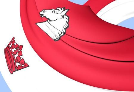 southwestern ontario: Flag of Guelph, Canada. Close Up.