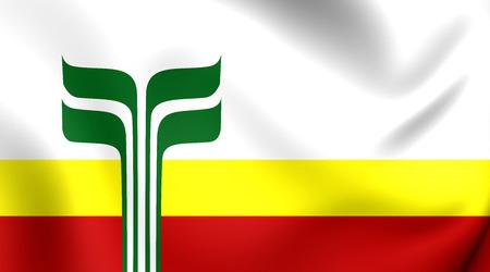 manitoba: 3D Flag of the Franco-Manitobans, Canada. Close Up.