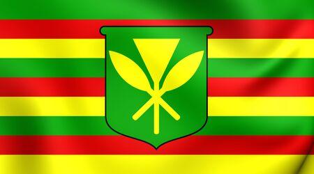 hawaii flag: Kanaka Maoli Flag, Hawaii. Close Up.
