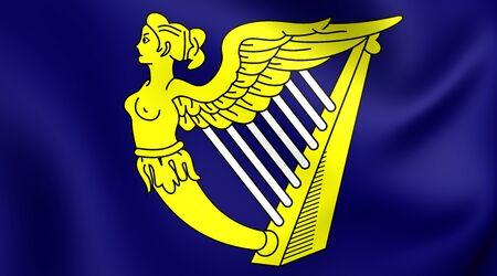 republic of ireland: Blue Harp Flag of Ireland. Close Up.
