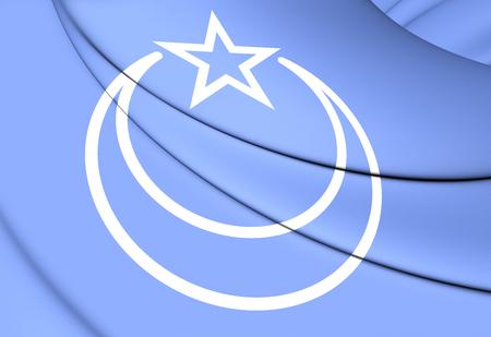second: 3D Flag of Second East Turkestan Republic.