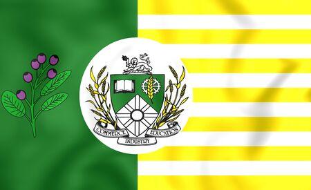 regina: 3D Flag of Saskatoon, Canada. Close Up.