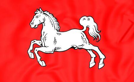 electorate: 3D Electorate of Hanover Flag (1692), Brunswick-Luneburg.