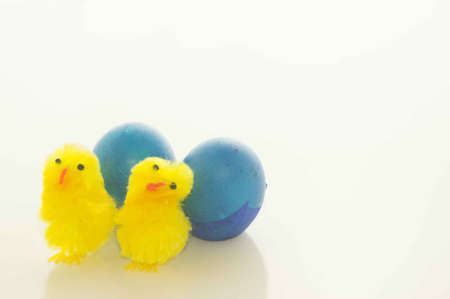 Easter Chicks and Blue Easter Eggs Stock Photo - 17743967