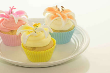 Easter Cupcakes On A Plate Stock Photo - 17743996