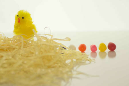 Easter Chick With Yellow Grass and Jelly Beans photo