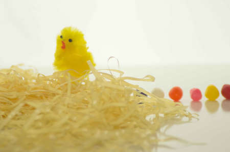 Easter Chick With Yellow Grass and Jelly Beans Stock Photo - 17743989
