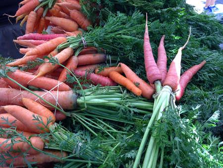 Fresh rainbow carrots at farmers market.