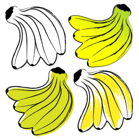 ligaments: Image ligaments bananas in the contour style