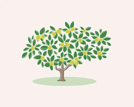 tree fruit: Stylized lemon tree on a light background
