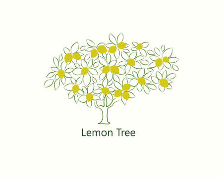 lemon tree image in the contour style