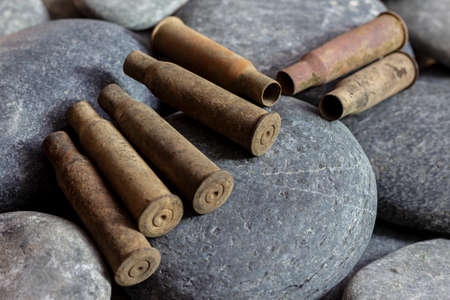 Excavated spent cartridges from the Mosin rifle of the First World War on stones.
