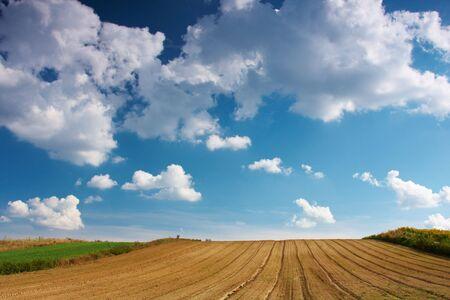 Summer blue sky over a plowed field photo