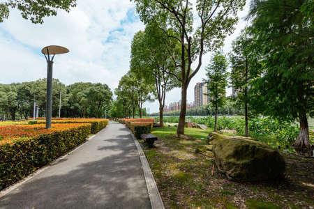 shady: A shady path in a park Stock Photo