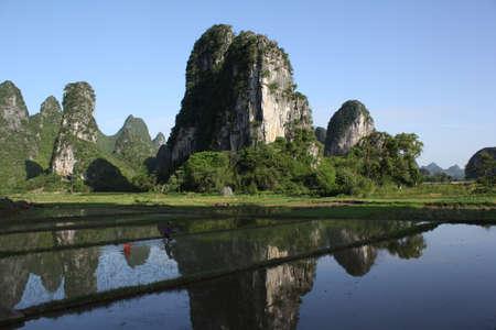 Guilin rice field scenery
