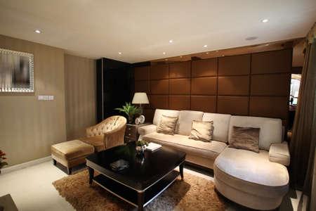 indoor photos, the living room sofa