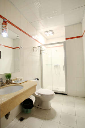 excretion: A toilet photos, spacious bathroom