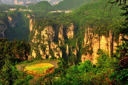 pastoral: High mountain pastoral
