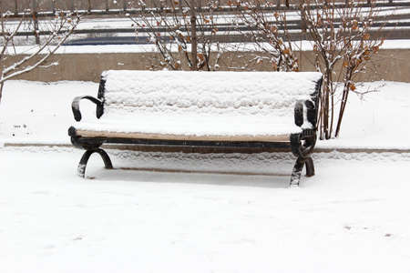 The snow in the park rest bench  Stock Photo