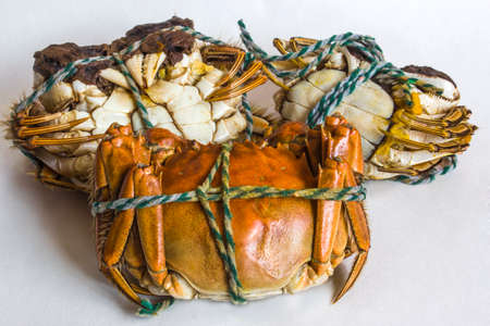 Neatly arranged golden color after cooking China Yang Cheng Lake crab